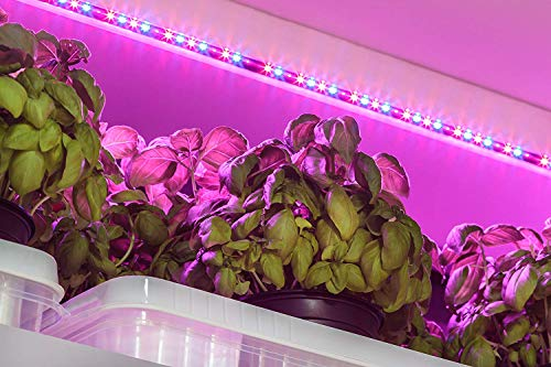 Grow Light Strip, OxyLED 13W 6ft 108 LED Plant Lights, Grow Lights for Indoor Plants, Flexible Growing Light, Waterproof Grow Lamp for Office, Indoor Gardening, Hydroponics, M-01(3 x Growing Lamp)