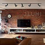 J.LUMI TRK9601 LED Track Light Head, Vintage