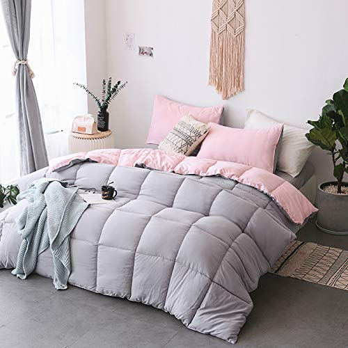KASENTEX All All Season Down Down Alternative Quilted Comforter Set with Sham(s) - Reversible Ultra Soft Duvet Insert Hypoallergenic Machine Washable, Pink Potpourri/Quartz Silver by KASENTEX (Image #5)