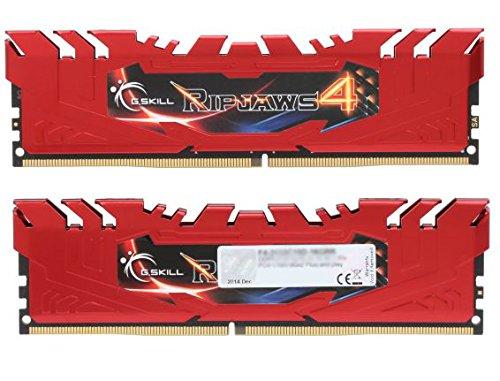 (G.Skill Ripjaws 4 Series 16GB (2 x 8GB) 288-Pin DDR4 SDRAM 2400 (PC4 19200) Memory Kit F4-2400C15D-16GRR)