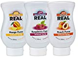 Reàl Fruit Infused Tea Flavoring Syrup - Mango, Peach, Raspberry (Pack of 3, 16.9 FL OZ Bottles)