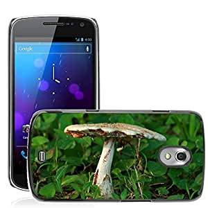 Hot Style Cell Phone PC Hard Case Cover // M00310457 Fungus Fungi Toadstool Mushroom // Samsung Galaxy Nexus GT-i9250 i9250