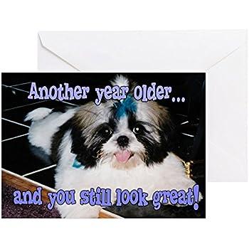 Amazon Cafepress Birthday Shih Tzu Puppy Blue Bow