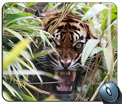 Tiger Predator Grass Jaws Teeth Rage Personalized Rectangle Mouse Pad Printed Nonslip Rubber Comfortable Customized Computer Mouse Pad Mouse Mat Mousepad