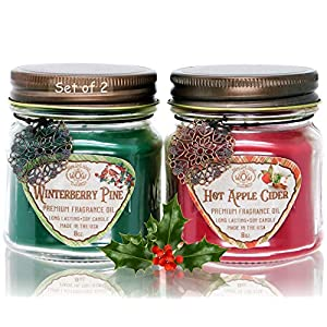 Scented-Candles-2-Pack-with-Hot-Apple-Cider-and-Winterberry-Pine-Jar-Candles-Gift-Sets-Great-Winter-and-Holiday-Candles-Natural-Soy-Wax-Blend-with-Premium-Fragrance-Oil-Made-in-USA