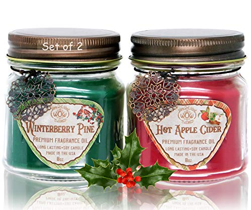 Scented Candles (2-Pack) with Hot Apple Cider and Winterberry Pine - Jar Candles Gift Sets - Great Winter and Holiday Candles- Natural Soy Wax Blend with Premium Fragrance Oil - Made in USA (Winterberry Set)