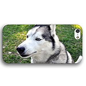 Questioning Husky Dog Puppy For SamSung Galaxy S6 Case Cover lim Phone Case