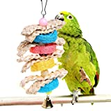 GMSP Colorful Wood Rings Rope Bite Chew Parrot Toys, Hanging Cage Swing Birds Parakeet.