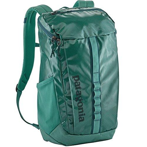 Patagonia Black Hole Backpack 25L Beryl Green