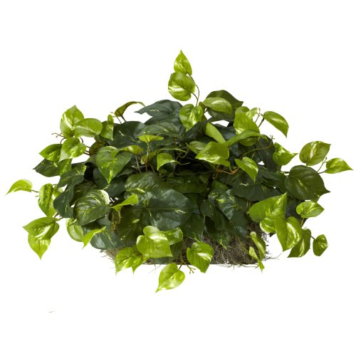 Nearly Natural 6708 Pothos Ledge Set on Foam Decorative Silk Plant, Green - Artificial Natural