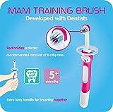 MAM Training Toothbrush for Babies, Training Brush