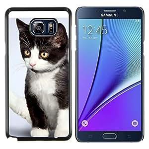 LECELL--Funda protectora / Cubierta / Piel For Samsung Galaxy Note 5 5th N9200 -- Gatito Mutt Mestizo Wirehair americano --