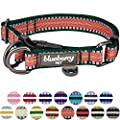 Blueberry Pet 15 Colors 3m Reflective Multi Colored Stripe Adjustable Dog Collar Dark Green And Pink Large Neck 18 26