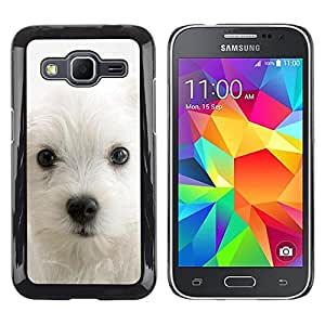 Be Good Phone Accessory // Dura Cáscara cubierta Protectora Caso Carcasa Funda de Protección para Samsung Galaxy Core Prime SM-G360 // West Highland White Terrier Dog Puppy