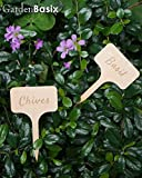 10 Wood Herbs Garden Plant Markers Label Engraved