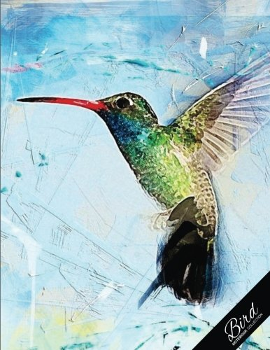 Bird Notebook Collection: Hummingbird Abstract Art, Writing Composition Notebook/Journal/Diary Gift Idea 100 Pages, 8.5 x (Birds Notebook)