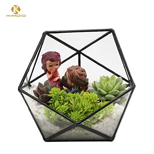 Kimdio Wall Hanging Glass Geometric Terrarium Container Polyhedron Ball Window Sill Decor Flower Pot DIY Display Box for Succulent Fern Moss Air Plants Miniature Fairy Garden Gift (Black)