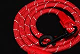 Comfortable & Shock Absorbing Red 6ft Dog Rope