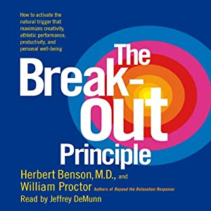 The Breakout Principle Hörbuch
