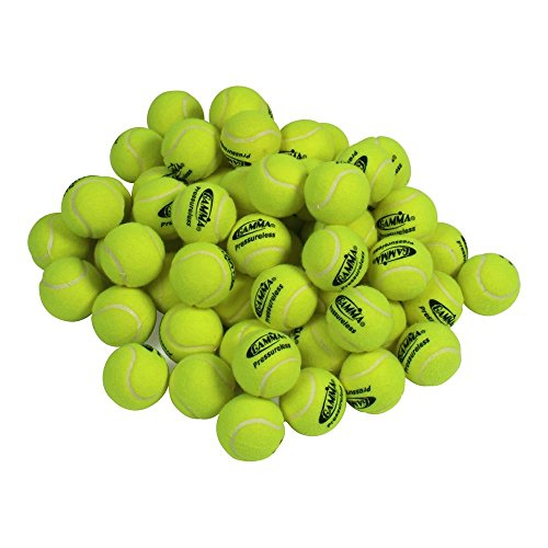 Gamma Pressureless Practice Balls (60 Pack)