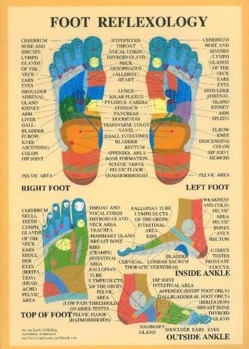 Foot Reflexology -- A2 (Reflexology Poster)
