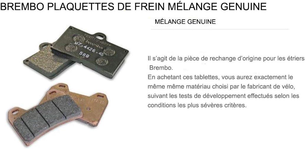 Pastiglie Brembo Freno Anteriori 07GR56.05 per RS REPLICA 125 1993 1997