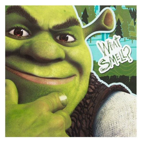 1LUN2482 Dreamworks Shrek 2 Ply Napkins 16 Count Hallmark Party Express