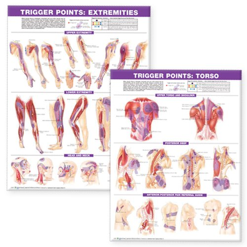 Trigger Point Chart Set: Torso & Extremities Paper ()