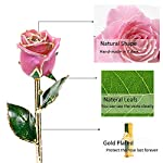 Icreer-24k-Gold-Dipped-RoseEternity-Rose-for-AnniversaryBirthdayValentines-DayWeddingGifts-for-HerMomWifeGirlfriend-with-Crystal-Stand