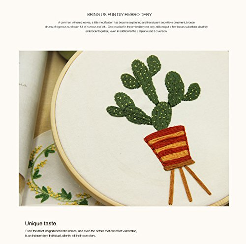 Embroidery Kit for beginners, Gift Set, Cactus(4) Design (No - Cactus Hut