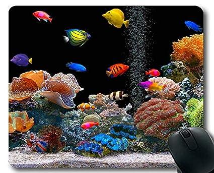 Amazon com : Mouse pad, beta Fish Theme of Full of