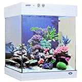 JBJ 15 Gallon White Cubey Aquarium
