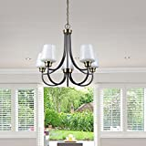 CO-Z 5-Light Antique Brass Chandelier, Modern 5 Light Ceiling Lighting Fixtures with Satin Etched Cased Opal Glass Shade for Dining Room Kitchen Living Room Bedroom Foyer Hallway Review