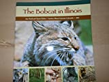 img - for The Bobcat in Illinois (2002 booklet) book / textbook / text book