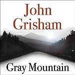 Gray Mountain | John Grisham