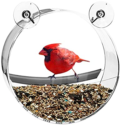 Contempo Creatures Bird Feeder - Mounts on Windows with Strong Suction Cups and Drain Holes