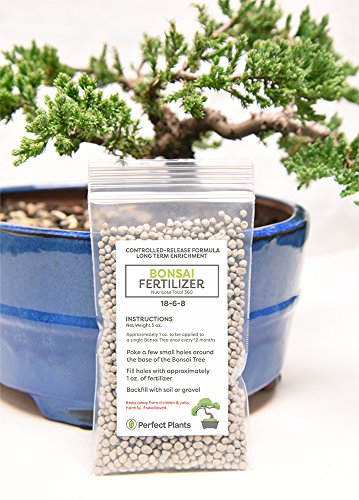 Bonsai Fertilizer Pellets by Perfect Plants - 5 Year Supply - All Natural Slow Release - Immediate Enrichment for All Live Bonsai Tree ()