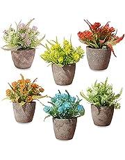 LELE LIFE 6Pack Mini Potted Artificial Plants, 6 Colors Mini Potted Fake Plants Artificial Greenery in Pot, Artificial Flowers Pot Fake Green Plants Faux Plants for Home Office Decor