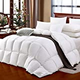 SHEONE All Seasons Lightweight White Goose Down Comforter 650 Fill Power 100% Cotton Shell Down Proof-Solid White Hypo-allergenic Duvet Insert With Tabs (Queen)