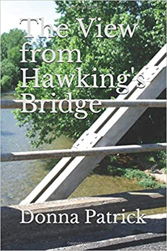 Amazon Fr The View From Hawking S Bridge Donna Patrick