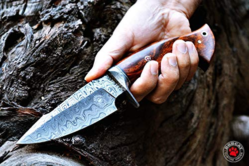 Custom Handmade Hunting Knife Bowie Knife Damascus Steel Survival Knife EDC 10'' Overall Walnut Wood with Sheath by Bobcat Knives (Image #4)