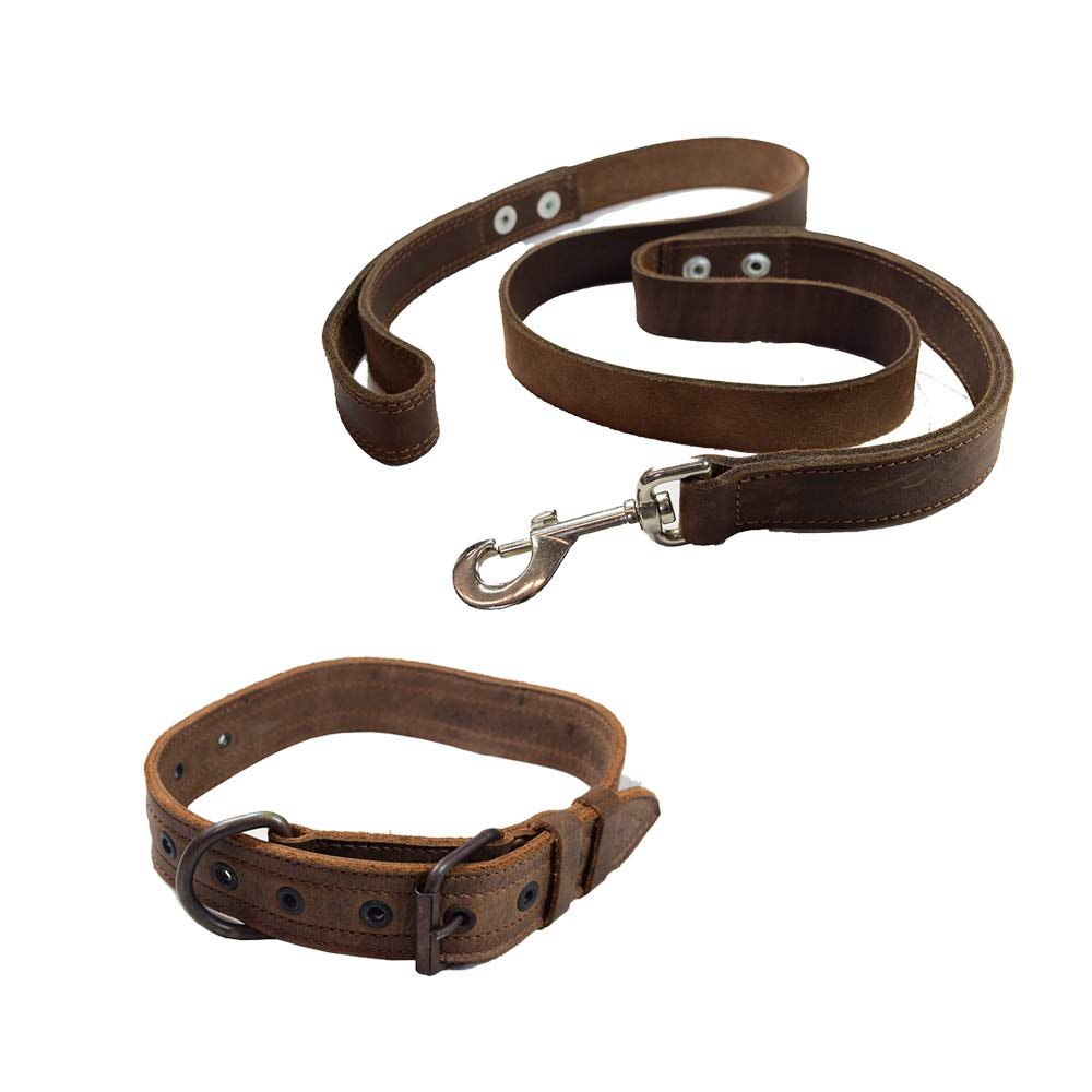 Hide & Drink, Dog Walker Starter Pack (Set of 2), Tough Leather Dog Leash (6 feet) & Dog Collar for Medium Size Dog (10 to 19 Inches), Training/Walking, Handmade 101 Year Warranty :: Bourbon Brown by Hide & Drink