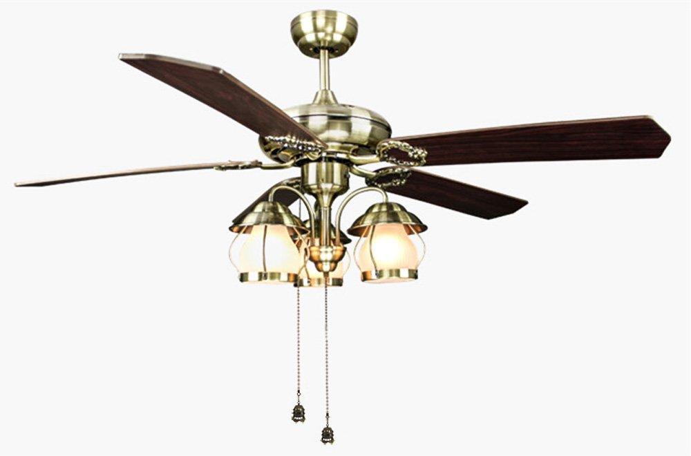 Amazon.com: hyamass 2pcs Vintage jaula colgante ventilador ...
