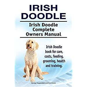 Irish Doodle Dog. Irish Doodle dog book for costs, care, feeding, grooming, training and health. Irish Doodle dog Owners Manual. 1