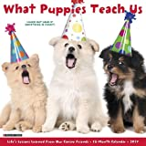 Quality What Puppies Teach Us Wall Calendar Pups Puppy Dogs 2017 {jg} Great Holiday Gift Ideas - for mom, dad, sister, brother, grandparents, gay, lgbtq, grandchildren, grandma.