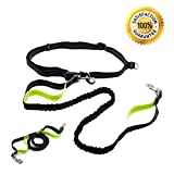 Hands Free Dog Leash Bungee for Running Walking Jogging Sport Retractable Hiking Leash Reflective Tape Dual Handle Extendable Adjustable Pet Training Lead Waist Belt For Medium and Large Dog