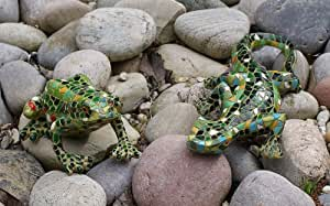 Resina de mosaico geco y rana