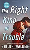 img - for The Right Kind of Trouble (McKays Series) book / textbook / text book