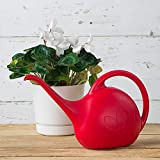 Novelty 30605 Indoor Watering Can, 1/2 Gallon, Red