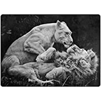 Area Rugs 80x58 Inches Black Animals Monochrome Lion Wildlife Modern Soft Carpet For Living Room,Bedroom,Entrance,Decorative,Hallway by Double Joy